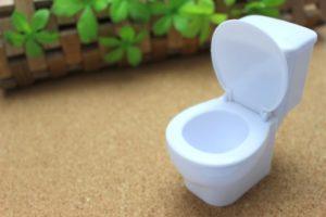トイレの水漏れ修理を依頼するタイミング